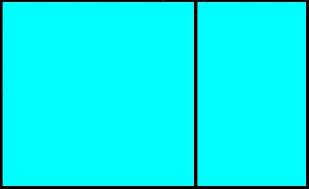 النّسبة الذّهبيّة - حبر أون لاين