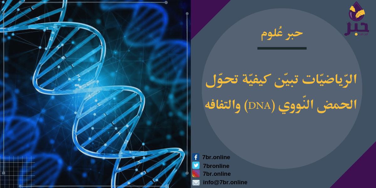الحمض النّووي - حبر أون لاين